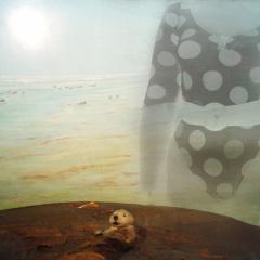 Žena-s-vydrou-koláž-60-x-40-cm-2002